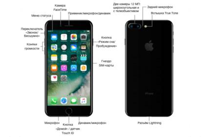 основные элемента айфона 7