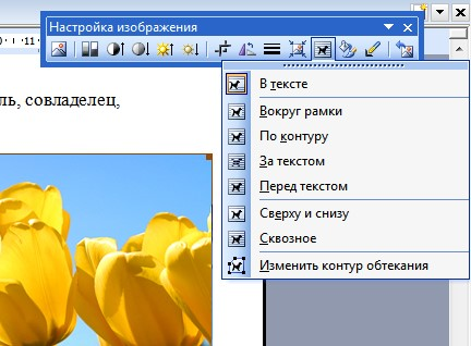 как вставить картинку в ворде 2003