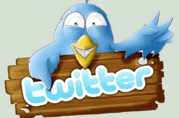 Твиттер смешная птичка